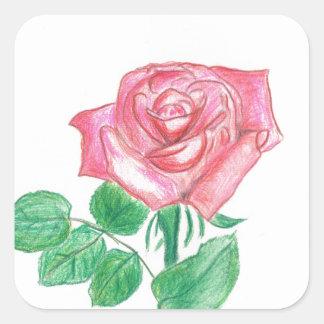 Color de rosa pegatina cuadrada