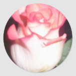 color de rosa pegatina redonda