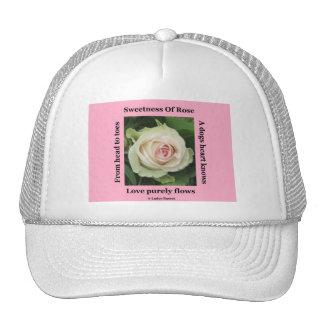 Color de rosa poético del poema del gorra en rosa