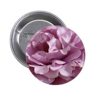 color de rosa, púrpura 2 pins