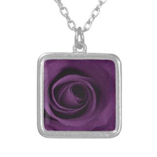 Color de rosa púrpura collar plateado