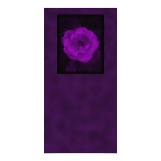 Color de rosa púrpura. Con púrpura negra y oscura Plantilla Para Tarjeta De Foto