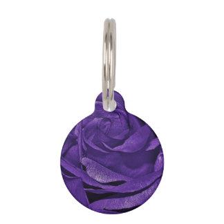 Color de rosa púrpura de fibro identificador para mascotas