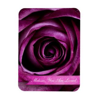 Color de rosa púrpura dramático elegante hermoso c imanes