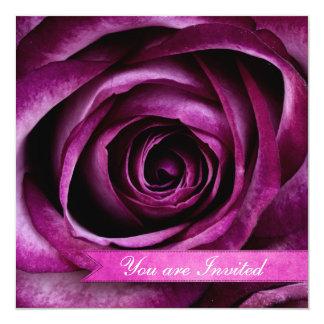 """Color de rosa púrpura dramático elegante hermoso invitación 5.25"""" x 5.25"""""""