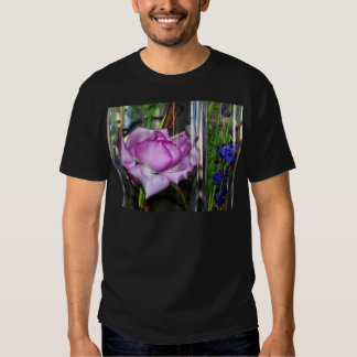 Color de rosa púrpura en un vidrio lleno de agua playera
