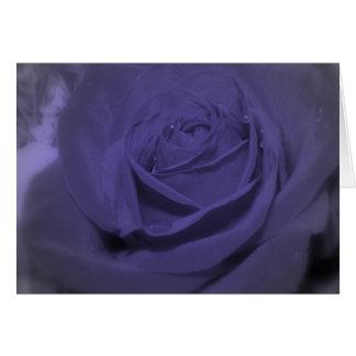 Color de rosa púrpura felicitacion