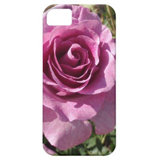 Color de rosa púrpura iPhone 5 Case-Mate cobertura