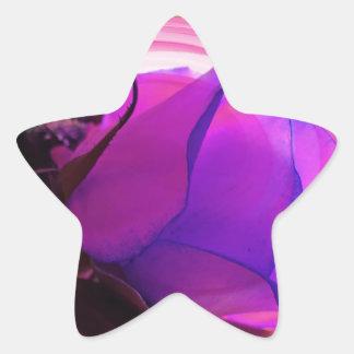 Color de rosa púrpura pegatinas forma de estrella personalizadas