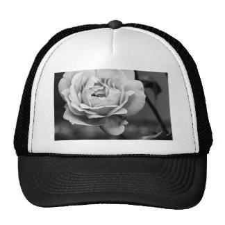 Color de rosa romántico blanco y negro gorro