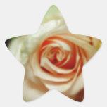 Color de rosa romántico pegatinas forma de estrellaes personalizadas