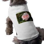 Color de rosa rosa claro camisetas de mascota