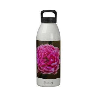 Color de rosa rosado botellas de beber