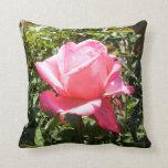 Color de rosa rosado almohada
