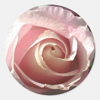 Color de rosa rosado bonito pegatinas redondas
