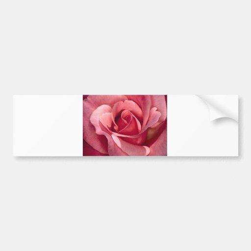 Color de rosa rosado bonito pegatina de parachoque