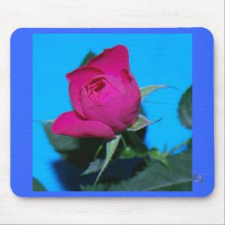 Color de rosa rosado bonito alfombrillas de ratón
