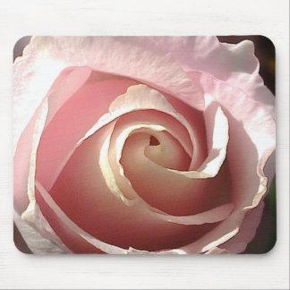 Color de rosa rosado bonito tapete de ratón