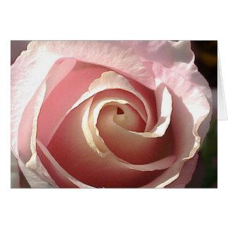 Color de rosa rosado bonito tarjeta de felicitación