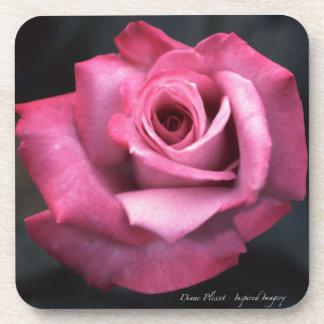 Color de rosa rosado brillante delicioso posavasos