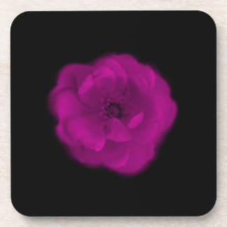 Color de rosa rosado brillante. Fondo negro Posavasos De Bebida
