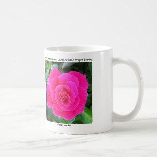 Color de rosa rosado brillante taza de café