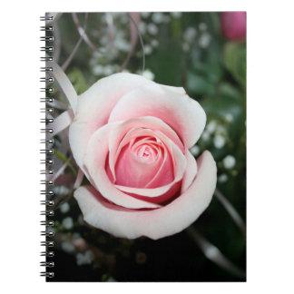 color de rosa rosado con cierre de la cinta encima spiral notebooks