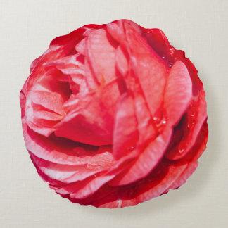 Color de rosa rosado con descensos del agua, cojín redondo
