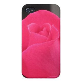 Color de rosa rosado con el brote - caja de la mot iPhone 4 protectores
