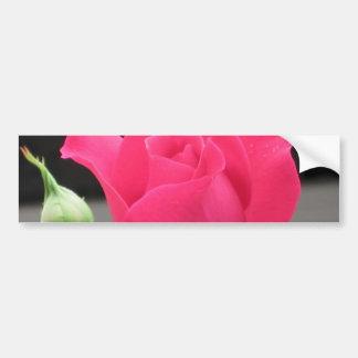 Color de rosa rosado con el brote pegatina para auto