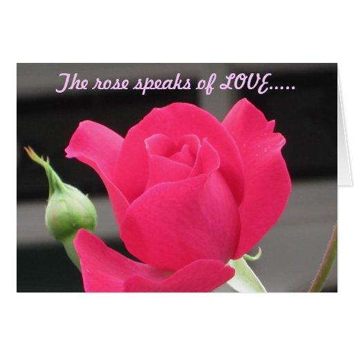 Color de rosa rosado con el brote - tarjeta