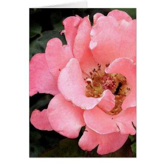 Color de rosa rosado con el centro amarillo felicitación