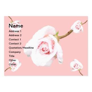 Color de rosa rosado con las gotas de agua tarjetas de negocios
