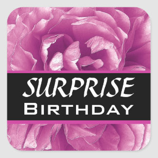 Color de rosa rosado con volantes del cumpleaños colcomanias cuadradases