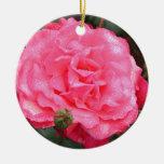 Color de rosa rosado cubierto de rocio ornamentos de reyes magos