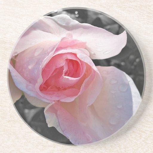 Color de rosa rosado de B&W Posavasos Cerveza