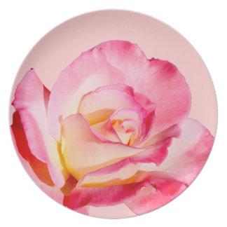 Color de rosa rosado de Prettty Plato Para Fiesta