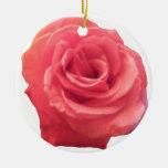 Color de rosa rosado ornaments para arbol de navidad