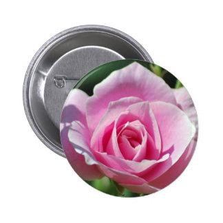 Color de rosa rosado del amor pin redondo de 2 pulgadas