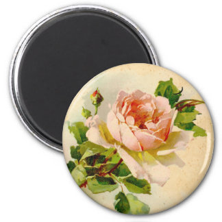 Color de rosa rosado del Victorian Imán Redondo 5 Cm