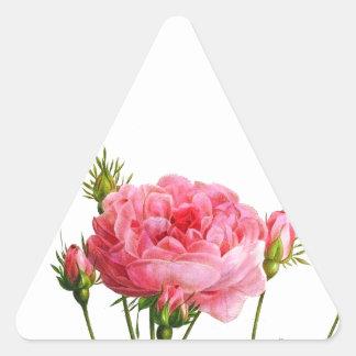 Color de rosa rosado del vintage - arte botánico pegatina triangular