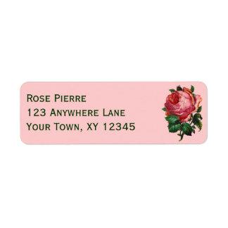 Color de rosa rosado del vintage etiqueta de remite