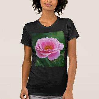 Color de rosa rosado divino camiseta