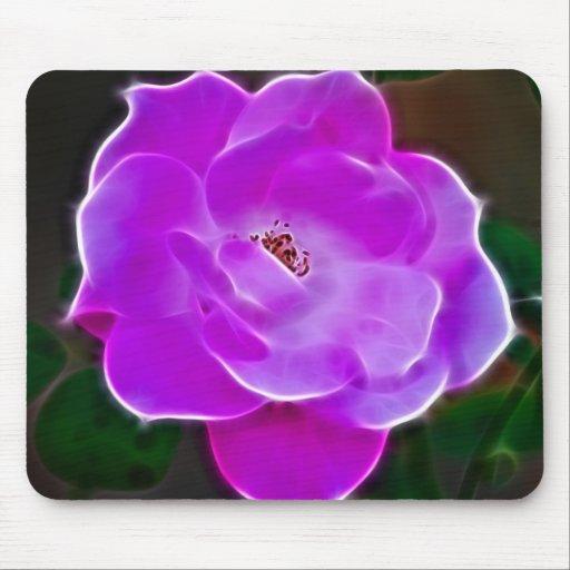 Color de rosa rosado divino y significado tapetes de raton