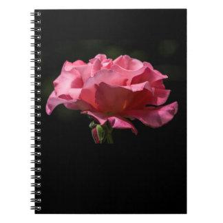 Color de rosa rosado en el cuaderno negro