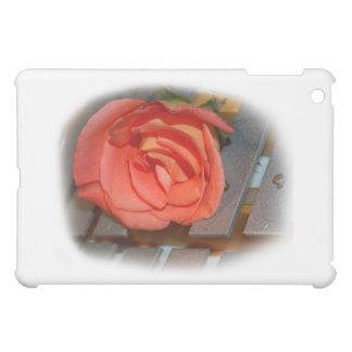 Color de rosa rosado en el mazo Belces del metal