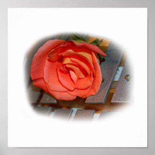 Color de rosa rosado en el mazo Belces del metal Impresiones