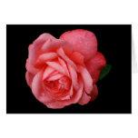 Color de rosa rosado en fondo negro tarjeton