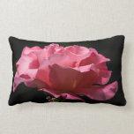 Color de rosa rosado en la almohada de tiro negra
