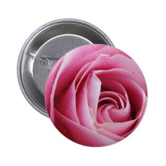 Color de rosa rosado en la lluvia pin redondo 5 cm
